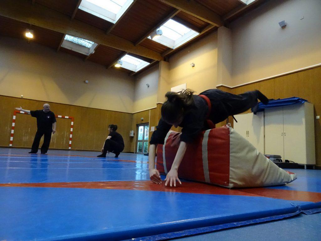 ninjutsu-dijon-bujinkan-dojo-entrainements-kamo-con-2016-21