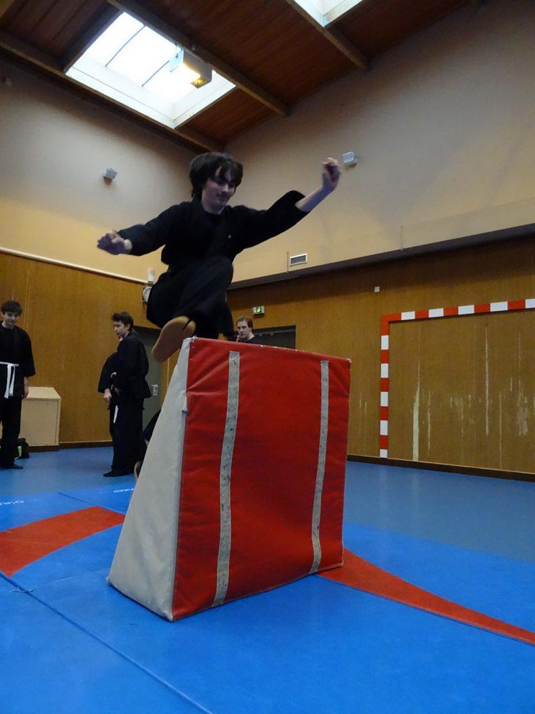 ninjutsu-dijon-bujinkan-dojo-entrainements-kamo-con-2016-22