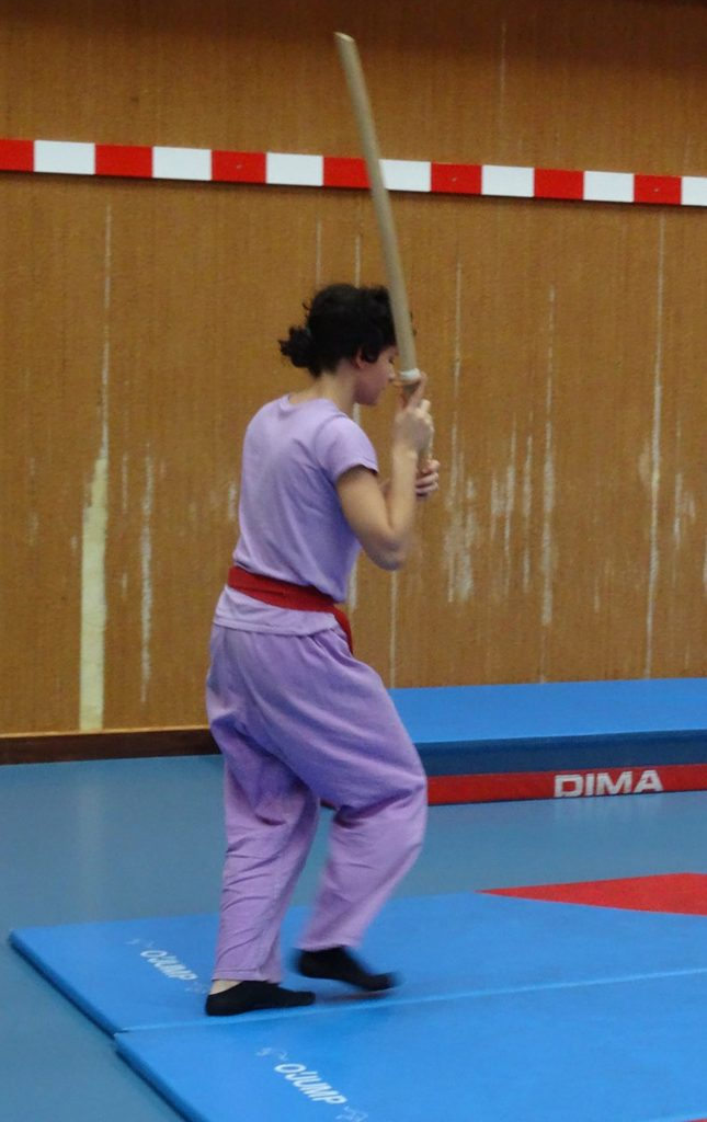 ninjutsu-dijon-bujinkan-dojo-entrainements-kamo-con-2016-33