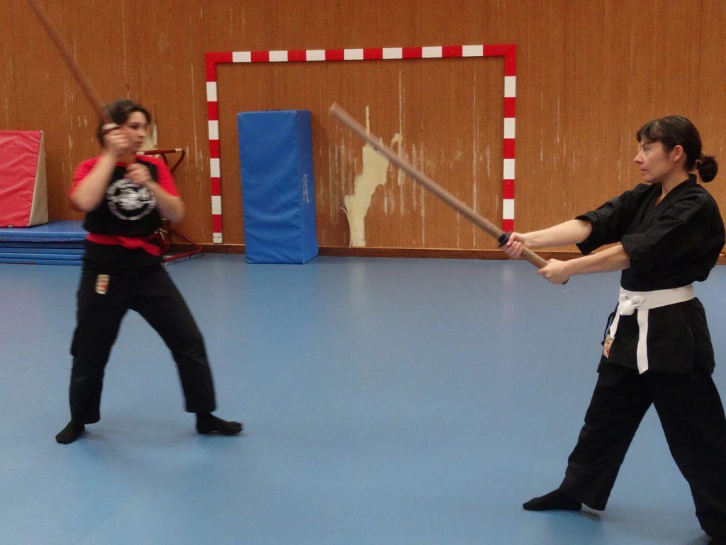 ninjutsu-dijon-bujinkan-dojo-entrainements-kamo-con-2016-36