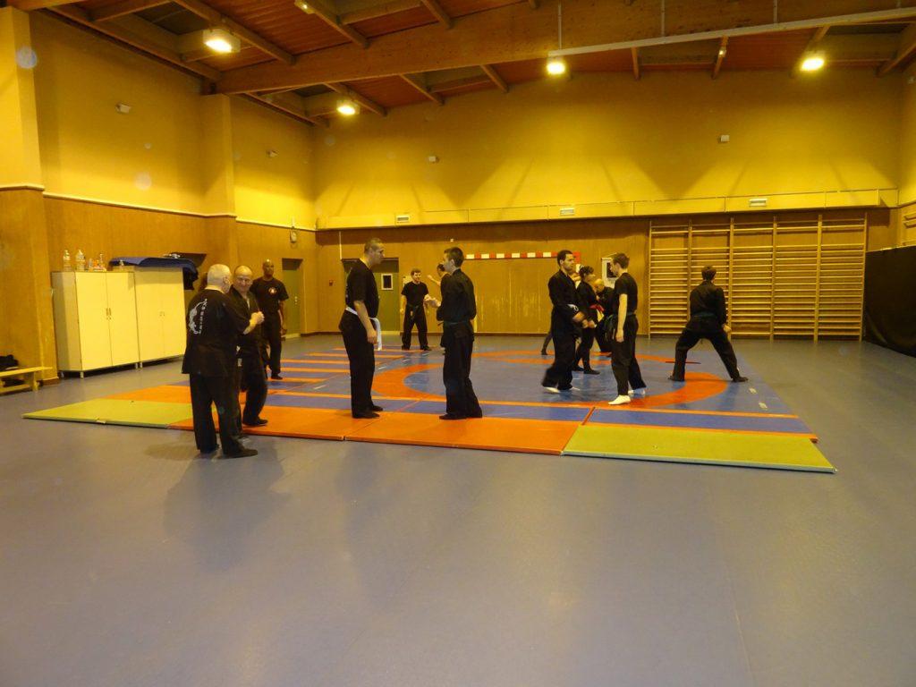 ninjutsu-dijon-bujinkan-dojo-entrainements-kamo-con-2016-45
