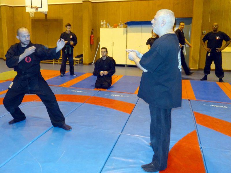 ninjutsu-dijon-bujinkan-dojo-entrainements-kamo-con-2016-59