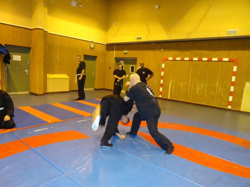 ninjutsu-dijon-bujinkan-dojo-entrainements-kamo-con-2016-62