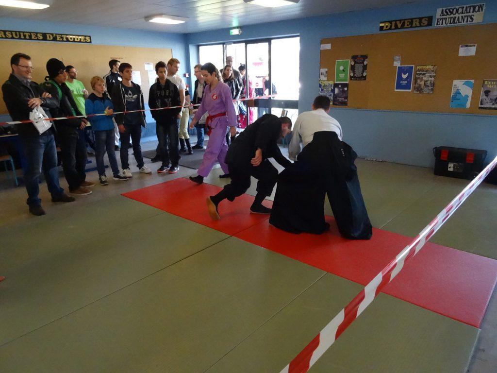 ninjutsu-dijon-bujinkan-dojo-entrainements-saiten-2015-22
