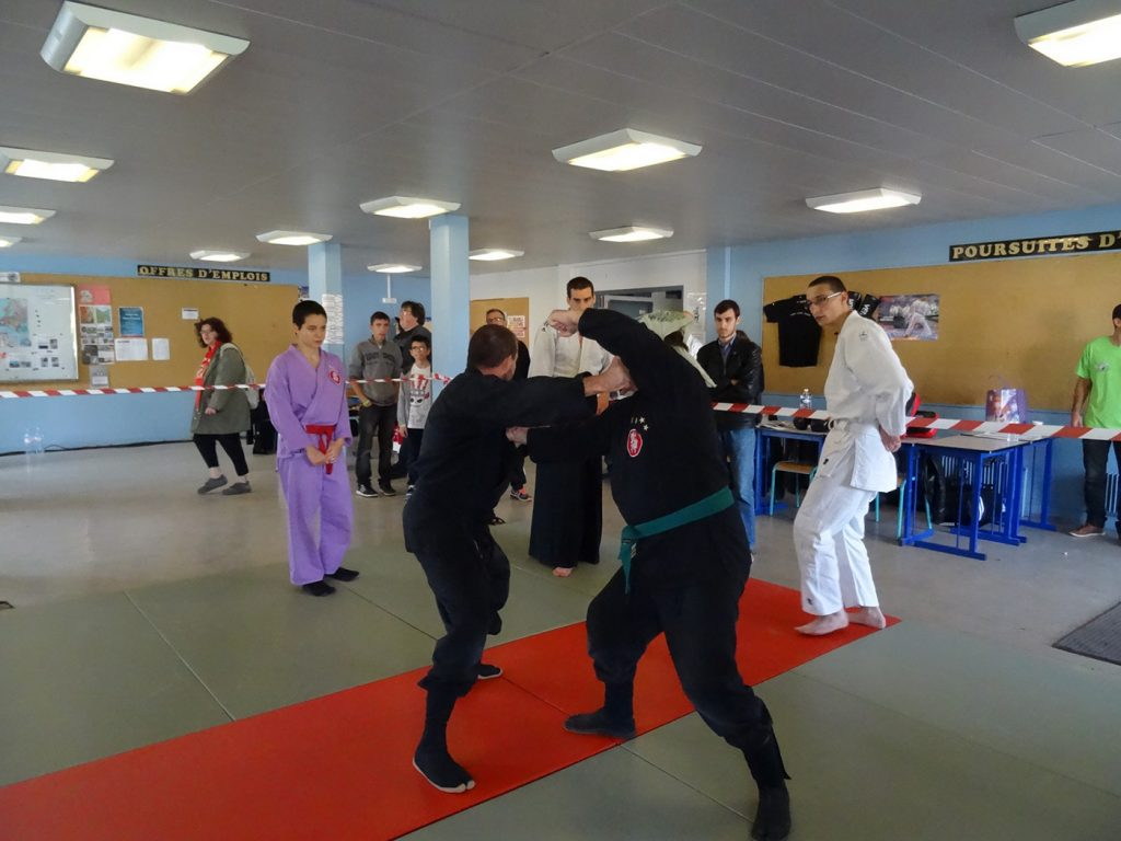 ninjutsu-dijon-bujinkan-dojo-entrainements-saiten-2015-25