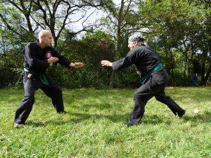 ninjutsu-dijon-bujinkan-saiten-2014-4