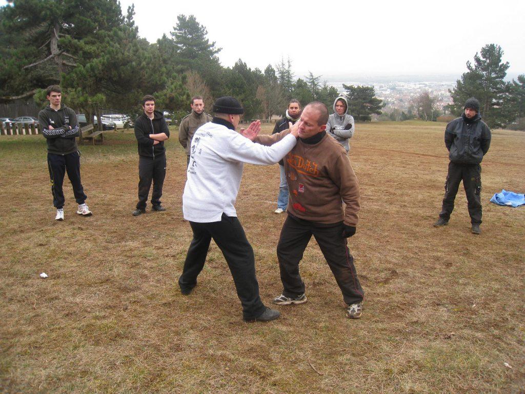 ninjutsu-dijon-bujinkan-sortie-darcey-2013-34