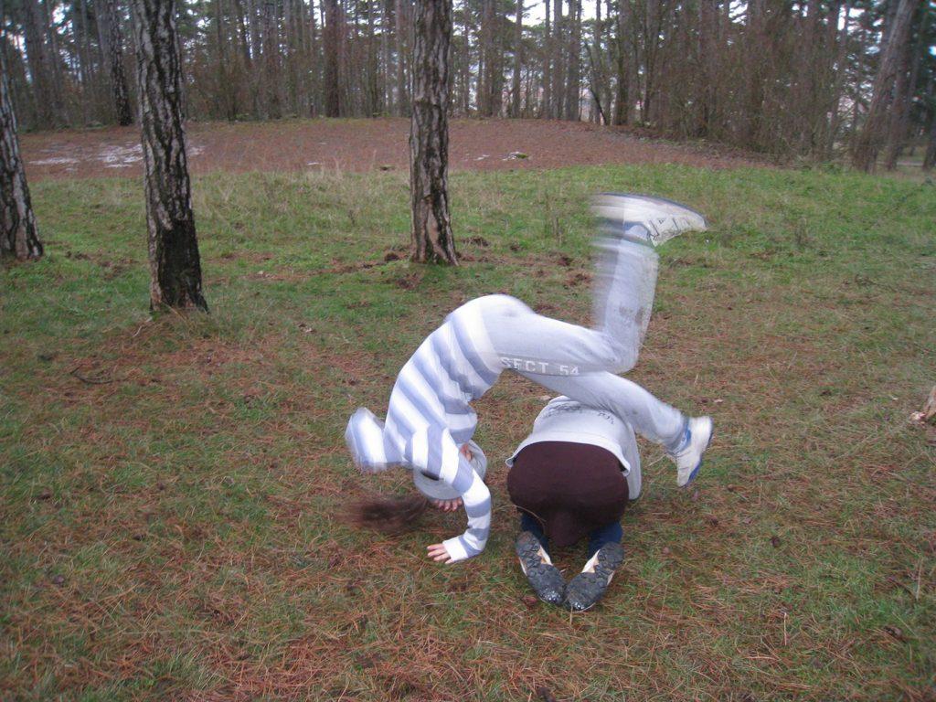 ninjutsu-dijon-bujinkan-stage-jardin-japonais-2012-12