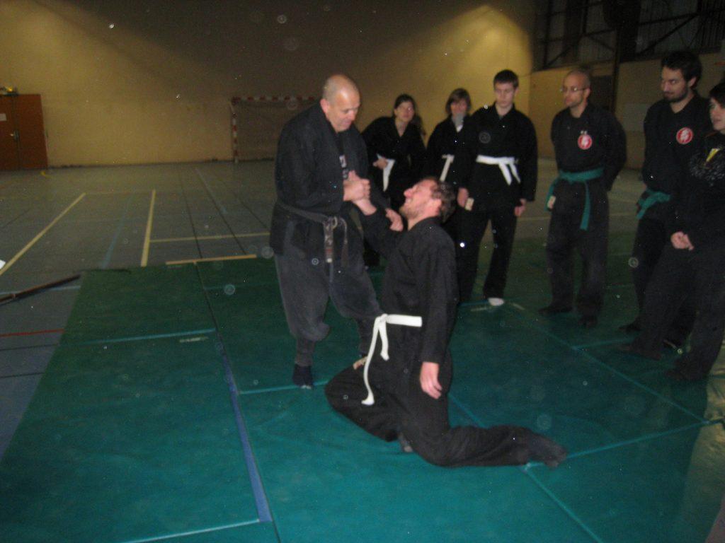 ninjutsu-dijon-bujinkan-stage-jardin-japonais-2012-21