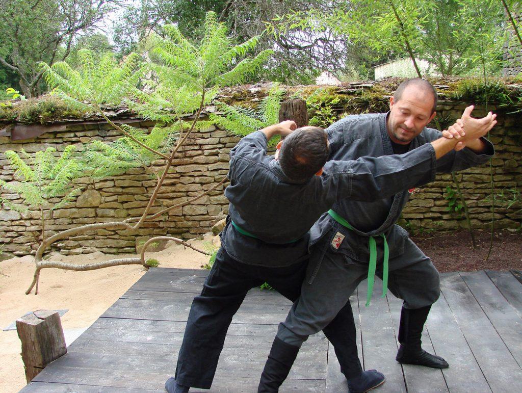 ninjutsu-dijon-bujinkan-stage-jardin-japonais-2012-6