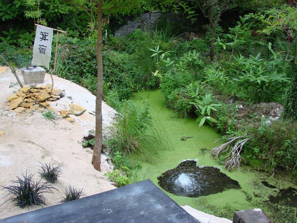 ninjutsu-dijon-bujinkan-stage-jardin-japonais-2012-8