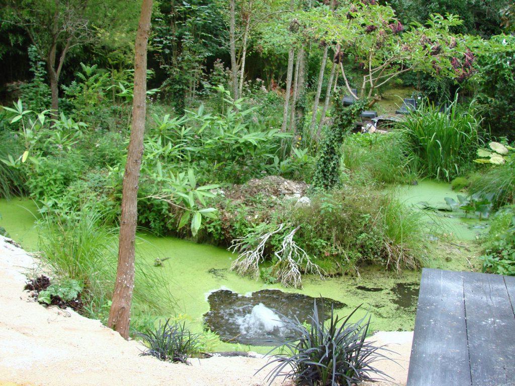 ninjutsu-dijon-bujinkan-stage-jardin-japonais-2012-9