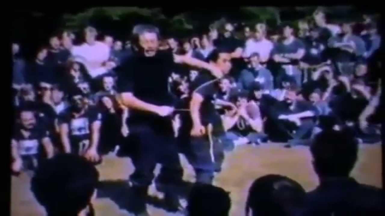 ninjutsu-dijon-bujinkan-dojo-Taikai1987